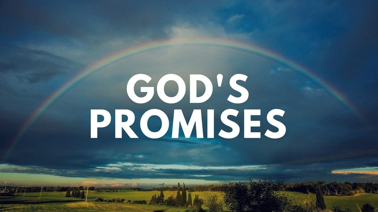 God's Promises - The Disciple Project