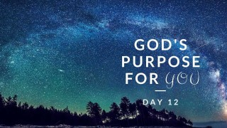 Day 12 - God's Purpose For You