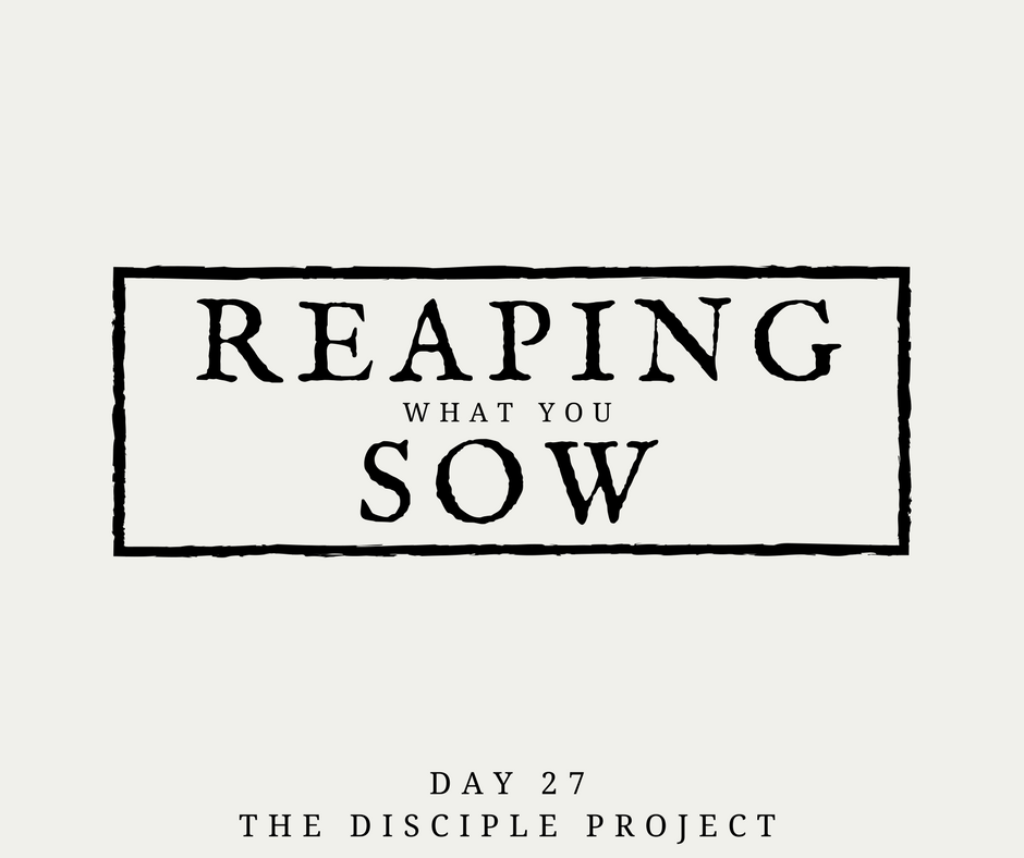 Day 27 - Reaping What You Sow