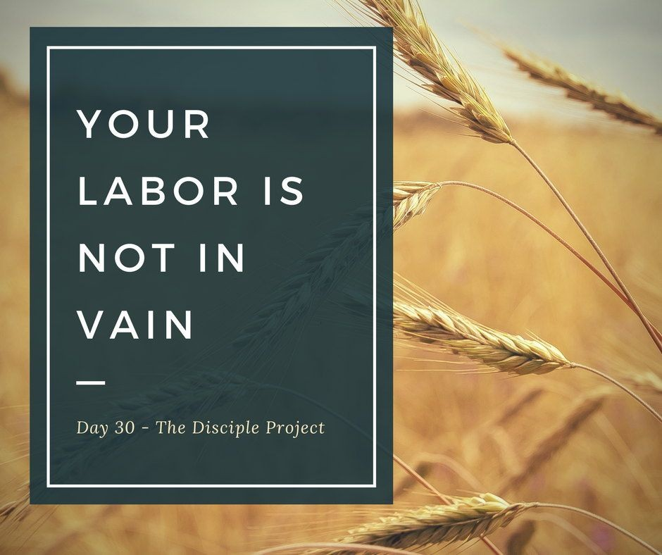 Day 30 - Your Labor Is Not In Vain
