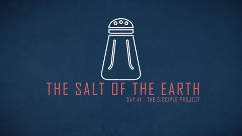 Day 41 - The Salt Of The Earth