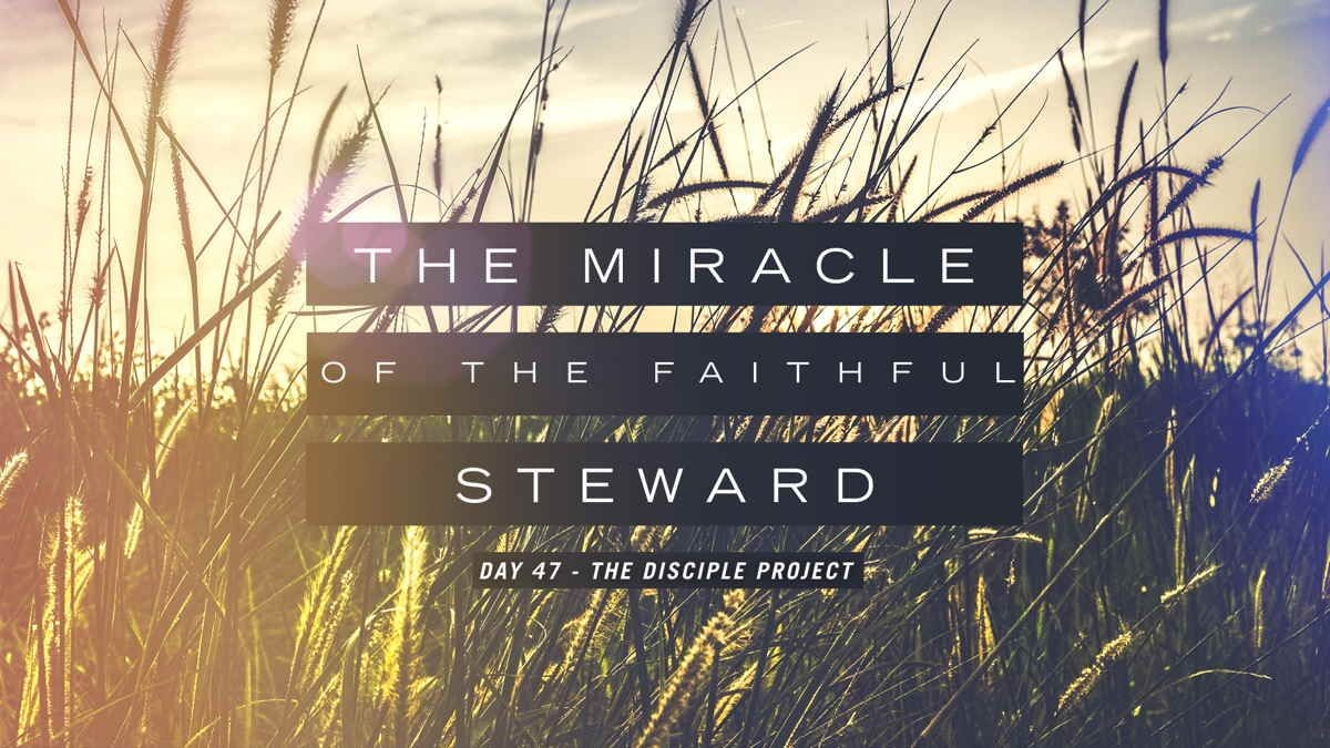 Day 47 - The Miracle Of The Faithful Steward