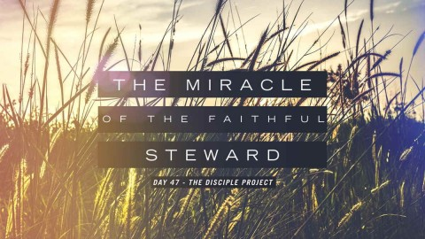 The Miracle Of The Faithful Steward