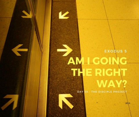 Day 55 - Am I Going The Right Way?