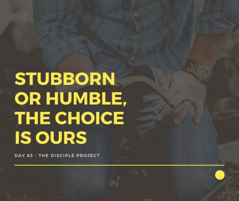 Day 83 - Stubborn or Humble, The Choice is Ours