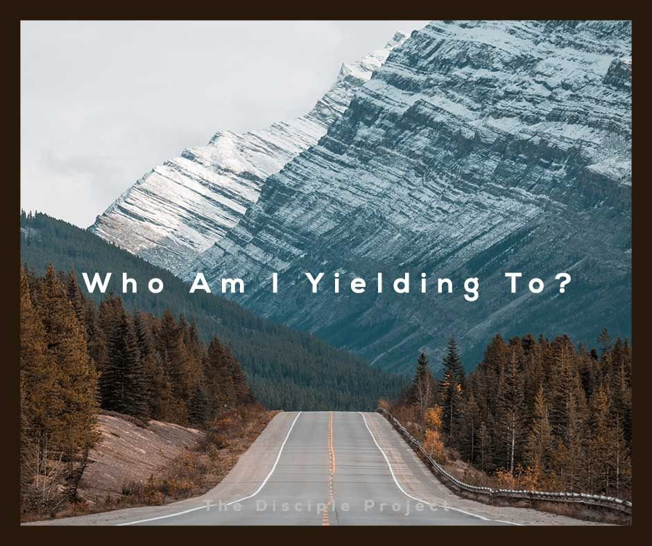 Who Am I Yielding To?