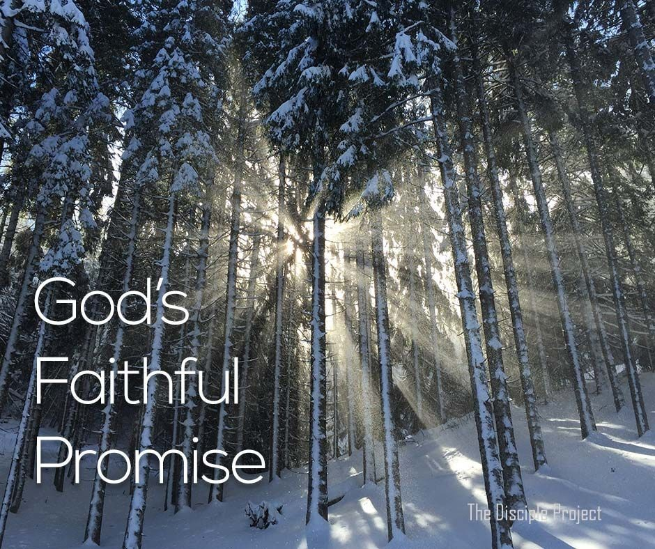 God's Faithful Promise