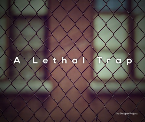 A Lethal Trap - Numbers 12