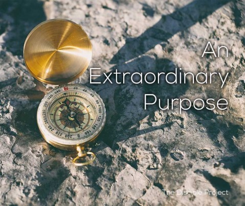 An Extraordinary Purpose - Numbers 7