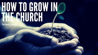 How to Grow in the Church | The Church Series | Lesson 4